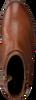 Cognacfarbene TOMMY HILFIGER Stiefeletten TH HARDWARE HIGH  - small