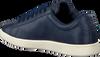 Blaue LACOSTE Sneaker CARNABY EVO DAMES  - small