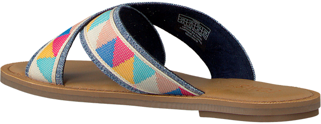 multi TOMS shoe VIV  - large