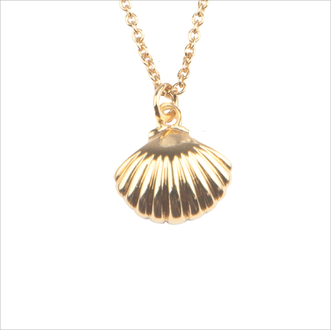 Goldfarbene ALLTHELUCKINTHEWORLD Kette SOUVENIR NECKLACE SEA SHELL - large