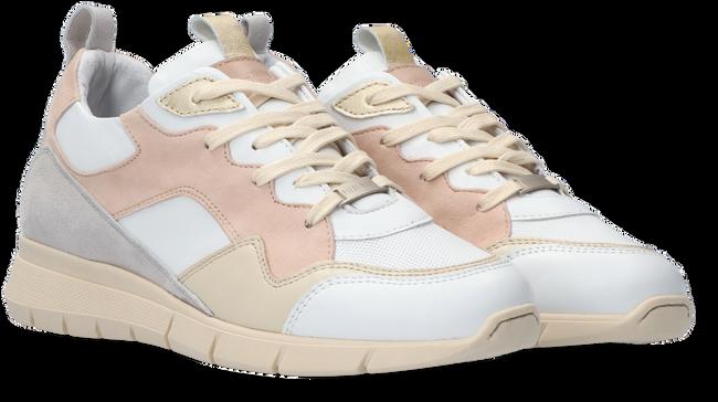 Beige PIEDI NUDI Sneaker 2206-06  - large