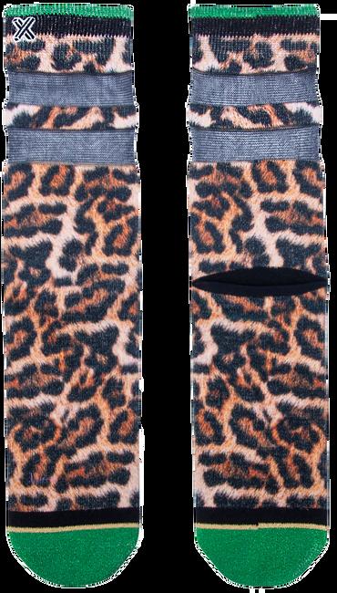 Mehrfarbige/Bunte XPOOOS Socken LUCY LEOPARD  - large