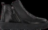Schwarze CA'SHOTT Ankle Boots 22120  - medium