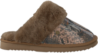 Taupe WARMBAT Hausschuhe FLURRY  - medium