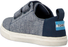 Blaue TOMS Sneaker LENNY  - small