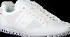 Weiße LACOSTE Sneaker low CHAYMON 120 3  - small