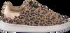 Braune VINGINO Sneaker TORNEO LOW - small