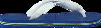 Blaue HAVAIANAS Zehentrenner BRASIL LOGO - medium