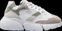 Grüne COPENHAGEN STUDIOS Sneaker low CPH555  - medium