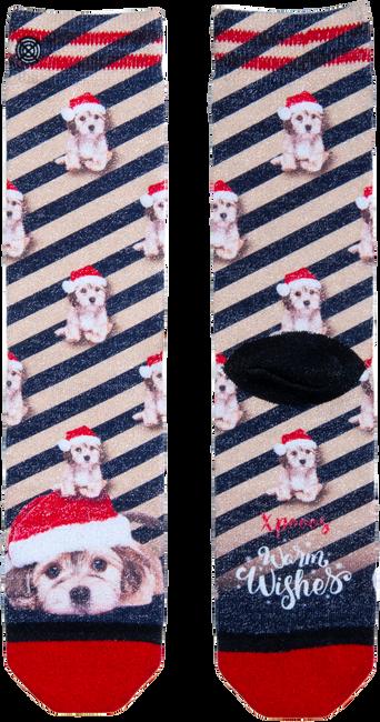 Mehrfarbige/Bunte XPOOOS Socken 70159  - large