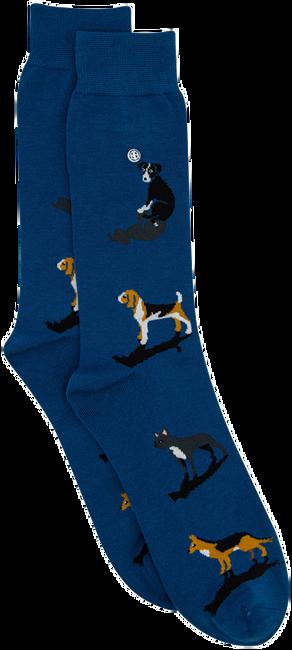 Blaue Alfredo Gonzales Socken DOGS  - large