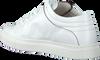 Weiße NAT-2 Sneaker low SLEEK LOW  - small