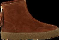 Cognacfarbene CA'SHOTT Ankle Boots 18112  - medium
