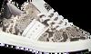 Beige MARIPE Sneaker 28544  - small