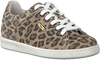 Beige VINGINO Sneaker TORNEO - small