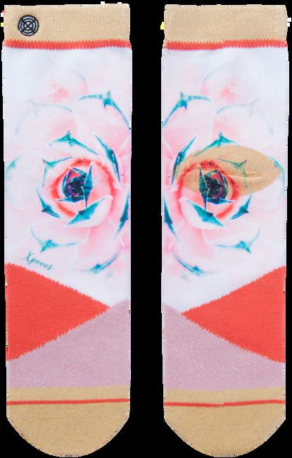 Rosane XPOOOS Socken GEORGIA  - large