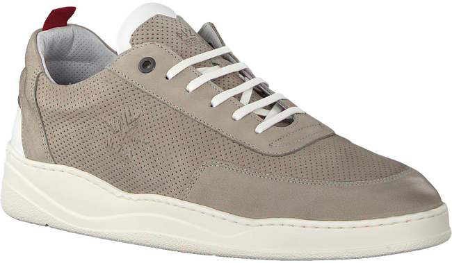 Graue NEW ZEALAND AUCKLAND Sneaker DARFIELD - large
