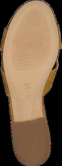 Gelbe NOTRE-V Mules 2213  - large