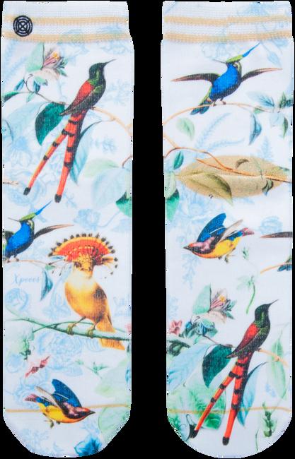Mehrfarbige/Bunte XPOOOS Socken AMELIE  - large