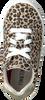 Beige TON & TON Sneaker low OM120142  - small