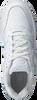 Weiße NIKE Sneaker EBERNON LOW WMNS  - small