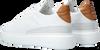 Weiße CYCLEUR DE LUXE Sneaker low GREENLAND  - small