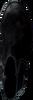 Schwarze FABIENNE CHAPOT Stiefeletten ANNIE STUDDED BOOT  - small