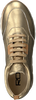 Goldfarbene ROBERTO D'ANGELO Sneaker low MOTO  - small