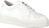 Weiße ROBERTO D'ANGELO Sneaker ELY - small
