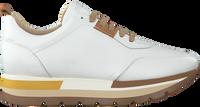 Weiße ROBERTO D'ANGELO Sneaker low MOTO  - medium