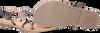Silberne GIOSEPPO Sandalen BISCOE  - small