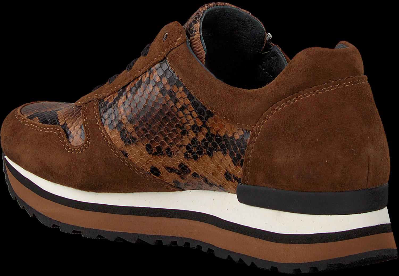 Cognacfarbene GABOR Sneaker 448 | Omoda