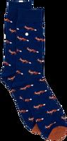 Blaue Alfredo Gonzales Socken FOXY  - medium