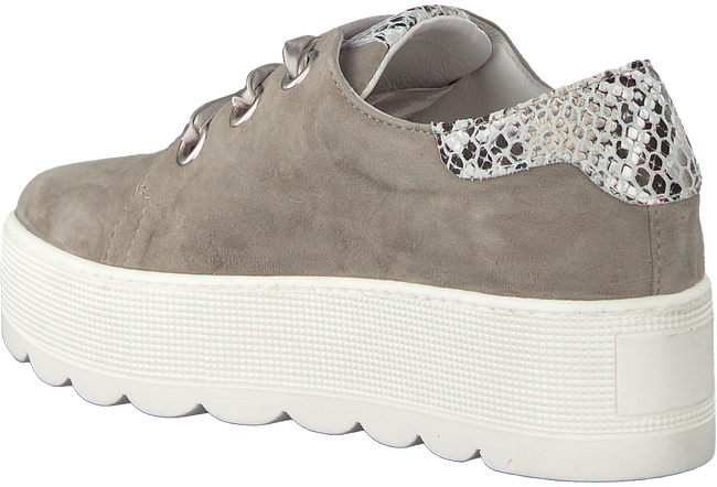 Taupe ROBERTO D'ANGELO Schnürschuhe 605  - large