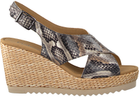 Graue GABOR Espadrilles 791.1  - medium