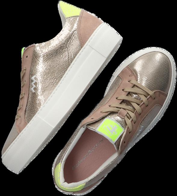 Beige FLORIS VAN BOMMEL Sneaker low 85333  - large