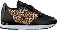 Schwarze CRUYFF CLASSICS Sneaker low PARKRUNNER  - medium