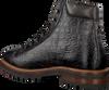 Graue GIORGIO Ankle Boots HE65316 - small