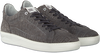 Graue FLORIS VAN BOMMEL Sneaker low 13265  - small