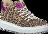 Beige BULLBOXER Sneaker ALG500  - small