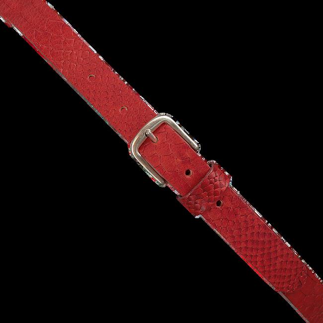 Rote PETROL Gürtel 25058  - large