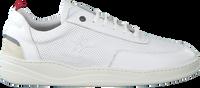 Weiße NEW ZEALAND AUCKLAND Sneaker DARFIELD - medium