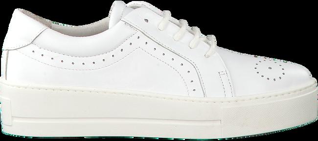 Weiße ROBERTO D'ANGELO Sneaker ELY - large