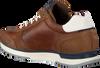 Cognacfarbene GAASTRA Sneaker KAI  - small