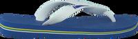Blaue HAVAIANAS Zehentrenner BRASIL LOGO KIDS - medium
