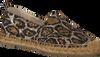 beige MALUO shoe 1100MA-PARMA  - small