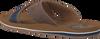 Braune AUSTRALIAN Zehentrenner CATWYCK AT SEA - small