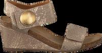 Beige CA'SHOTT Sandalen 8024 - medium