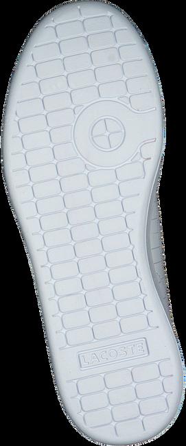 Weiße LACOSTE Sneaker CARNABY EVO 118 1 SPC - large