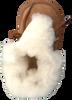 Cognacfarbene BERGSTEIN Babyschuhe BAMBI  - small